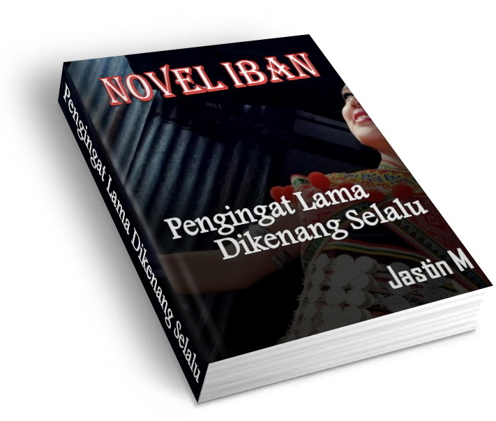 Novel pengerindu